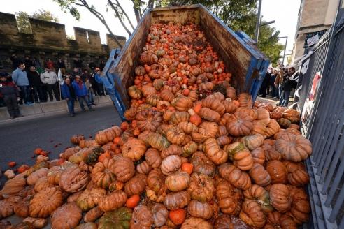 Французские фермеры против антироссийских санкций