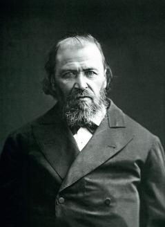 Яков Петрович Полонский. 1880-е гг.
